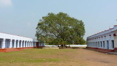 panduranga swamy temple chilakalapudi machilipatnam